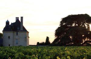 Domaine M Plouzeau